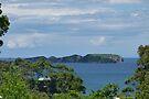 Tollgate Islands by Trish Meyer