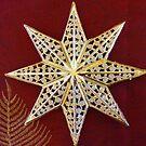 Christmas Star by Robyn Williams