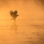 Golden Sunrise and Eagle  2016-4 by Thomas Young