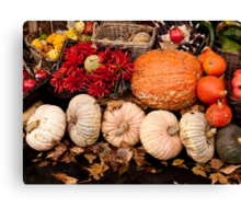 Fruits of Autumn Canvas Print