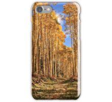 Autumn's Embrace Phone Case iPhone Case/Skin