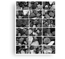 18 in the Shingles Chart Canvas Print