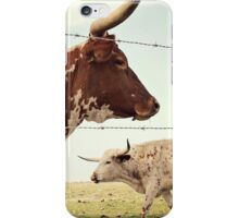 Texas Longhorn Cattle iPhone Case/Skin