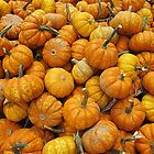 Pint-Sized Pumpkins by Monnie Ryan