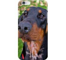 The Very Elegant Mr Darcy iPhone Case/Skin