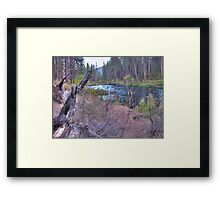 metolius riverscape Framed Print