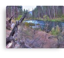 metolius riverscape Canvas Print