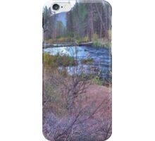 metolius riverscape iPhone Case/Skin