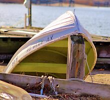Chartreuse Boat by Gilda Axelrod