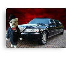 Teddy Bear Limousine Chauffeur Card/Picture Canvas Print