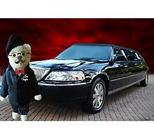 Teddy Bear Limousine Chauffeur Card/Picture Photographic Print