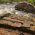 Steps to a Washed Out Bridge by Robin Clifton
