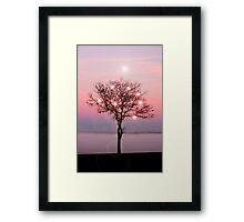 Magical Tree on the western Prairie.... Framed Print