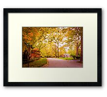 FALL GLORY Framed Print