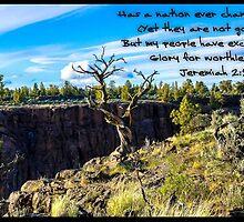 Bible Verse Jeremiah 2:11  by DianaBozart