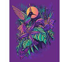 Purple Garden Photographic Print