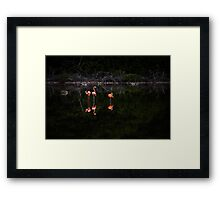 Reflections of the Swamp Framed Print