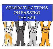 Congratulations on passing the bar. by KateTaylor