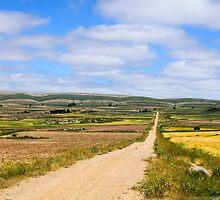 limestone strata, Maestrazgo, Aragon, Spain by Andrew Jones