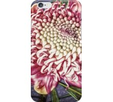 Painting of an Australian Beauty  iPhone Case/Skin