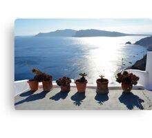 Flower pots with cactus in Santorini, Greece Canvas Print