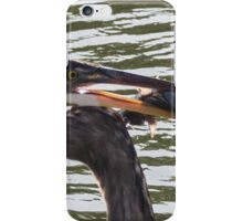 Blue heron with fish iPhone Case/Skin