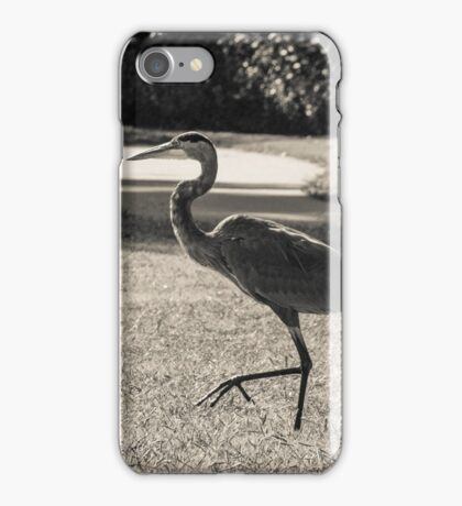 Blue heron taking a walk in the park iPhone Case/Skin