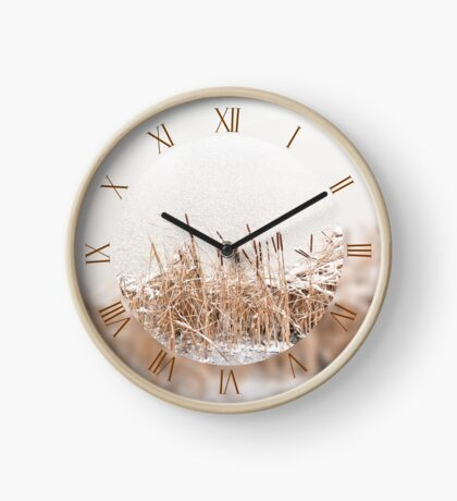 Typha reeds and frozen lake Clock