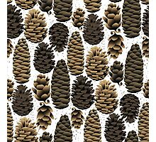 Christmas design with fir cones  Photographic Print