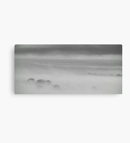 In Hiding Canvas Print