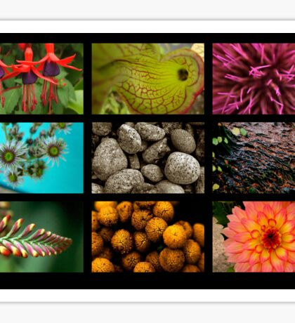 9 images of nature Sticker