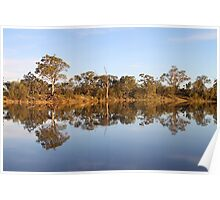 Late Afternoon Reflections on the River Murray Poster