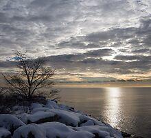 Lakeside Silver – Winter Morning Light by Georgia Mizuleva