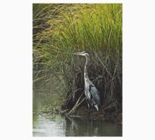 Great Blue Heron - Ardea herodias T-Shirt