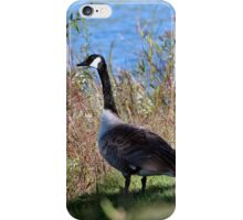 You silly Goose! This is Iowa...not Florida! iPhone Case/Skin
