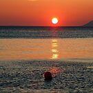 Sunbeams on the ball by Arie Koene