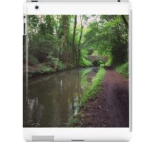 Riverside walks iPad Case/Skin