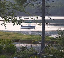View from my cottage in Canada, with my boat boston whaler. by Vujovich44