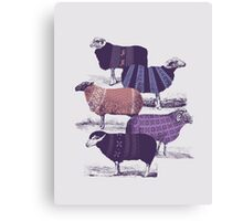 Cool Sweaters Canvas Print