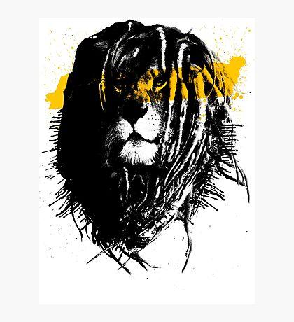 Lion rasta Photographic Print