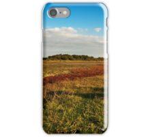 Wetlands of Flakkee iPhone Case/Skin