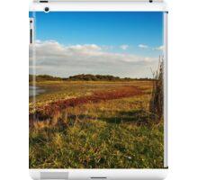 Wetlands of Flakkee iPad Case/Skin