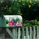 You've Got Mail by jules572