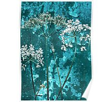 Meadow Flowers Poster