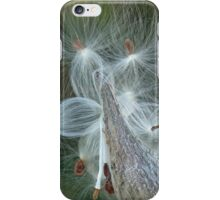 Autumn Milkweed iPhone Case/Skin
