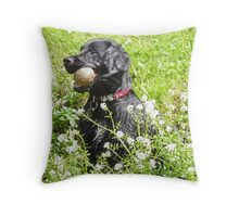 My Ball, I'm Wet and I like it! Throw Pillow