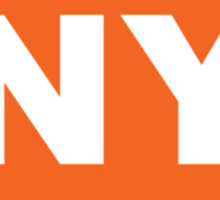 New York NY Euro Oval ORANGE Sticker