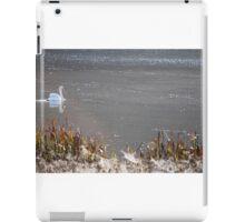 Tatton Swan looking East iPad Case/Skin