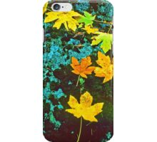 MAPLE LEAVES, LICHEN AND MOSS iPhone Case/Skin