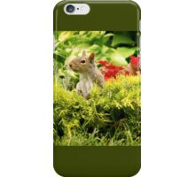 Squirrel in the Garden iPhone Case/Skin